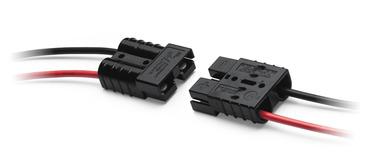 MK901245
