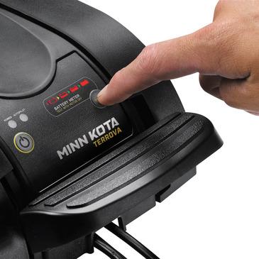 MK901719