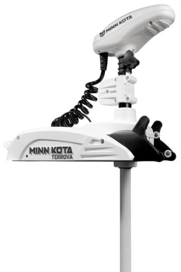 MK901745